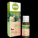Borovica – 100 % silica 10 ml